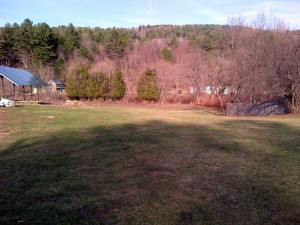 April 25, 2014: Last photo of the garden as a lawn