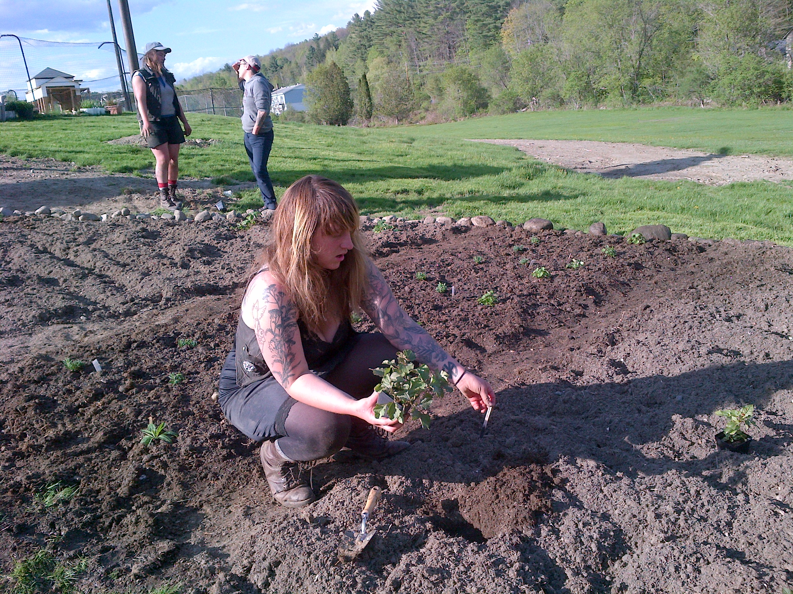 Lroy makes first plantings in the herb garden