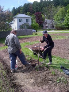 Cindy & Bernice dig holes for planting beefsteak tomatoes