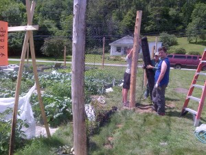 Young adults unrolling metal fence around cedar posts