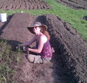 Sheryl Rapee-Adams plants onions