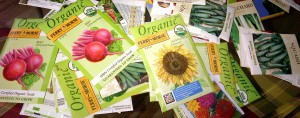 """A generous """"Seed Grant"""" from Vermont Community Garden Network, High Mowing Seeds, and others"""