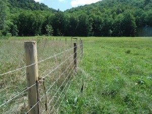 vermont department of agriculture fence