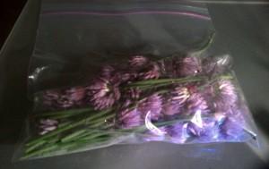 Purple scallion flowers in a bag