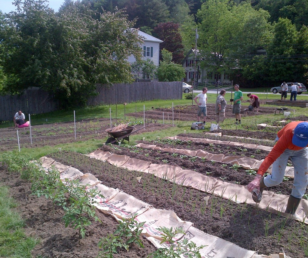 Many people work in the garden at once
