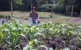 Jason plants seeds in the 3rd section of corn.