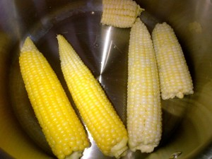Two ears of yellow corn & two ears of white corn in a silver pan