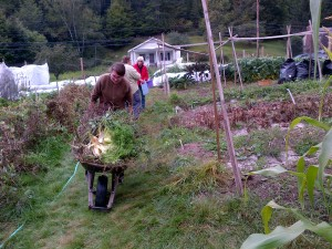 092014 Colleen pushes wheelbarrow, Cindy & Bernice chat