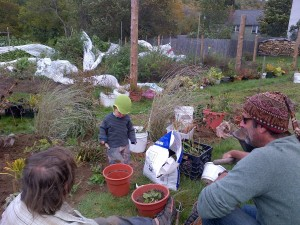092214 Cindy, Collin & son in perennial bed