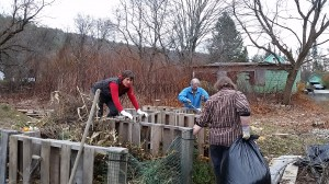 111014 Jean, Cindy & Chris put up compost3.58