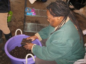 032715 Workday-Paij gets potting soil