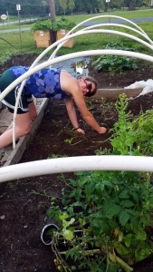 Colleen clears a plot in Bed 8 for planting