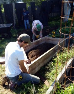 Skill, muscle, and coordinated teamwork are  required to measure, cut, move, and assemble new raised beds.
