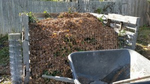 """A rare moment of sunshine highlights the layered """"lasagna"""" compost. Last year's compost is nearly finished for spreading."""
