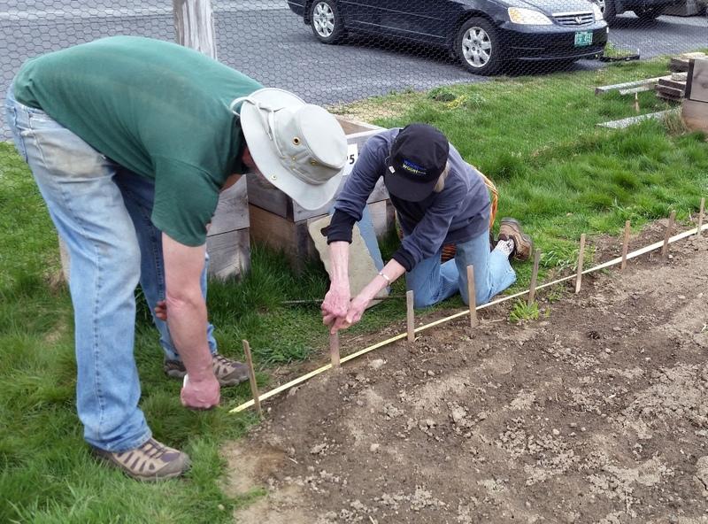2016-05-07 Ned & Bernice prep for corn planting.05