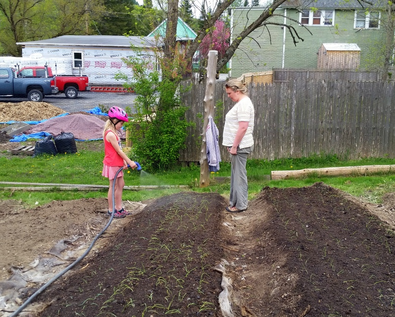 2016-05-21 Jameson & Andrea end of day new onion watering.29