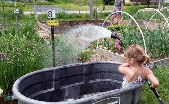 2016-05-29 Maya in trough, Ella in garden.31