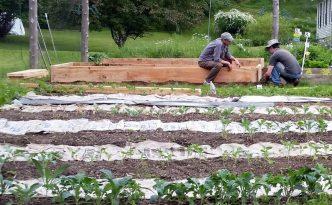 2016-06-11 John & Ned assemble new garden beds.31
